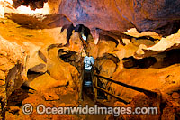 Capricorn Caves Limestone Cavern Photo - Gary Bell