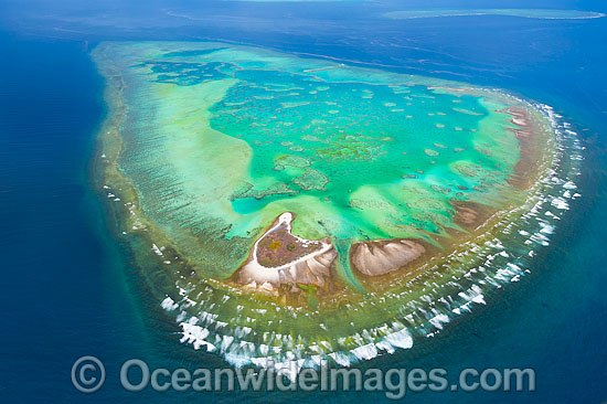 Aerial view of One Tree Island and reef, with Sykes Reef visible in background. One Tree Island is a small coral cay located near the Tropic of Capricorn in the southern Great Barrier Reef, Australia, and part of the Capricorn group of Islands. Photo - Gary Bell