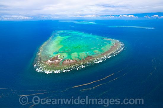Aerial view of One Tree Island and reef, with Wistari Reef, Heron Island Reef and Sykes Reef visible in background. One Tree Island is a small coral cay located near the Tropic of Capricorn, Sth Great Barrier Reef, Australia. Note Red Tide Algal Bloom. Photo - Gary Bell