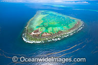 One Tree Island with Wistari Reef