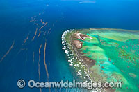 One Tree Island reef aerial