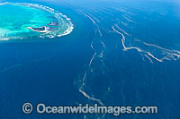 One Tree Island and Red Tide Photo - Gary Bell