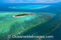 Heron Island Reef Photo - Gary Bell
