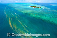 Red Tide near Heron Island Photo - Gary Bell