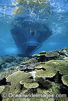 Semi-submersible at Heron Island Photo - Gary Bell