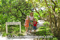 Tourists in Forest on Heron Island Photo - Gary Bell