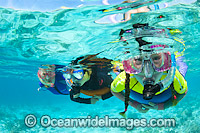 Family Snorkeling Great Barrier Reef Photo - Gary Bell