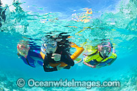 Children Snorkeling at Heron Island Photo - Gary Bell