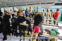 Scuba Divers on Heron Island Dive Boat Photo - Gary Bell