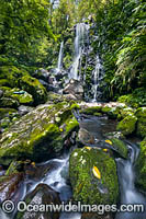 Chalan Falls Lamington National Park Photo - Gary Bell