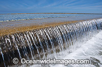 Tidal Wall Heron Island photo