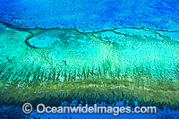 Aerial of Heron Island and Wistari Reef photo