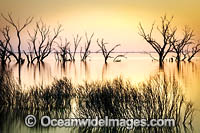 Lake Menindee at sunset Photo - Gary Bell