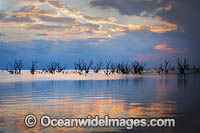 Lake Menindee at sunset