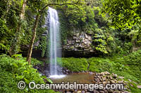 Crystal Shower Falls Dorrigo Photo - Gary Bell