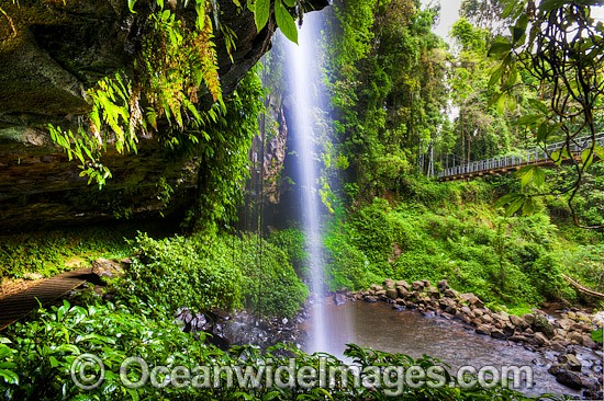 Crystal Shower Falls, situated in the Dorrigo World Heritage National Park, New South Wales, Australia. Photo - Gary Bell