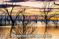 Lake Menindee at dawn sunrise Photo - Gary Bell