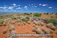 Outback Broken Hill Photo - Gary Bell