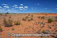 Outback desert landscape Photo - Gary Bell