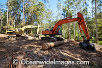Logging machinery photo