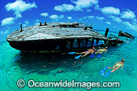 Protector shipwreck Heron Island photo