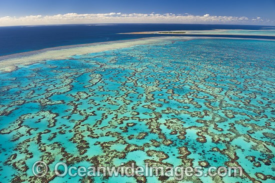 Aerial view of Wistari Reef Lagoon, with Heron Island Reef in the distance. Southern Great Barrier Reef, Queensland, Australia. Photo - Gary Bell