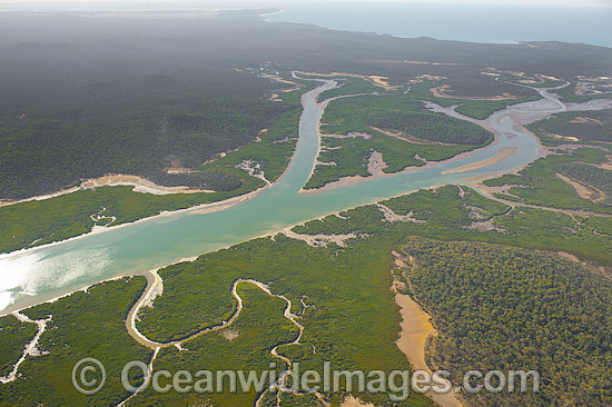 Aerial view of coastal mangrove wetland, situated close to Curtis Island, Gladstone, Queensland, Australia. Photo - Gary Bell