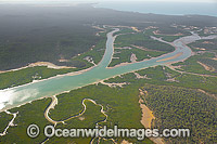 Curtis Island Mangrove wetland Photo - Gary Bell