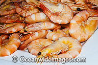 Prawn Seafood Photo - Gary Bell