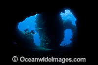 Diver in Cathedral caves Photo - David Fleetham