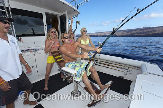 A gamefish is reeled in on a gamefishing boat, cruising the waters off Lanai, Hawaii, Pacific Ocean. Photo - David Fleetham