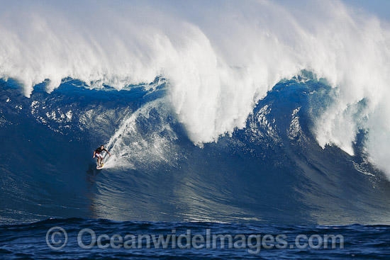 A tow-in Surfer drops down the face of Hawaii's big surf at Peahi (Jaws) off Maui. Pacific Ocean. Photo - David Fleetham