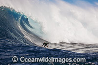 Surfer tow-in Hawaii image