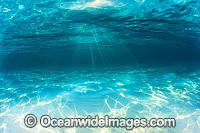 Underwater Seascape sand and sunrays Photo - Gary Bell