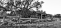 Historic Cottage Victoria Photo - Gary Bell
