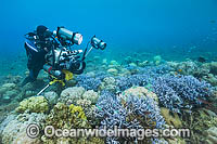 Underwater Cinema Photographer filming Photo - Gary Bell