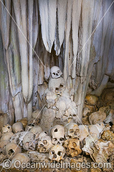 Native human skulls in a limestone cave, situated at Milne Bay, Papua New Guinea. Photo - Gary Bell