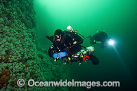 Scuba Diving Vancouver Island photo
