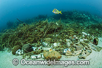 Garbage on coral reef Florida photo