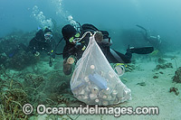 Scuba Divers picking up rubbish photo