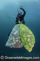 Scuba Diver collecting cans and garbage photo