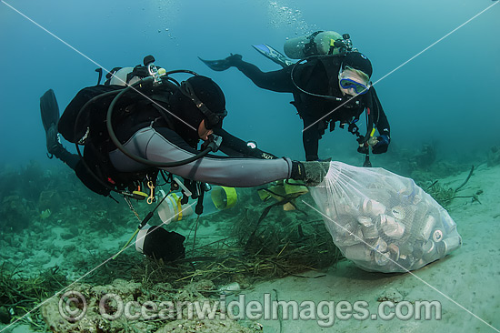 Scuba Divers picking up cans and garbage dumped on a coral reef offshore Palm Beach, Florida, USA. Photo - Michael Patrick O'Neill