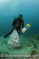 Scuba Diver collects garbage on Coral Reef photo