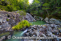 Woolgoolga Creek Rockpools Photo - Gary Bell