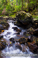 Sherwood Nature Waterfall Photo - Gary Bell