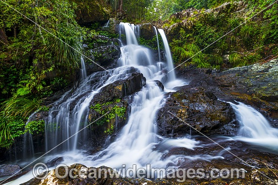 Bangalore Falls, situated on Bangalore Creek in the Bindarri National Park, near Coffs Harbour, New South Wales, Australia. Photo - Gary Bell