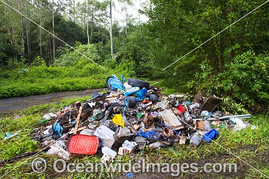 Household rubbish, senselessly dumped in State Forest in the Orara Valley, near Coffs Harbour, New South Wales, Australia. Photo - Gary Bell