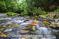 Stream Bindarri National Park Photo - Gary Bell