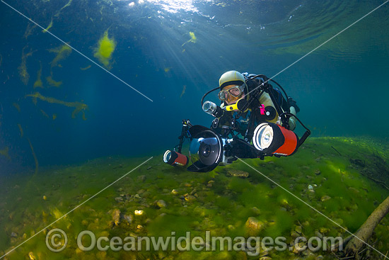 Underwater photographer, with scuba, photographing life in the Urumbilum River, situated in the Orara Valley, near Coffs Harbour, New South Wales, Australia. Photo - Gary Bell