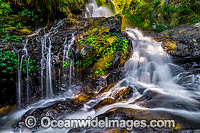 Bangalore Falls Coffs Harbour Photo - Gary Bell